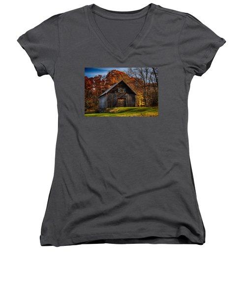 The Chester Farm Women's V-Neck T-Shirt (Junior Cut) by Tricia Marchlik