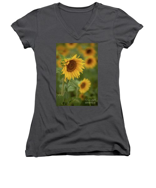 The Close Up Of Sunflowers Women's V-Neck