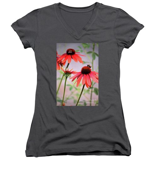 The Coneflower Collection Women's V-Neck T-Shirt