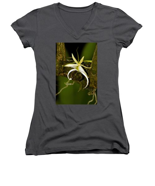 The Elusive And Rare Ghost Orchid Women's V-Neck T-Shirt