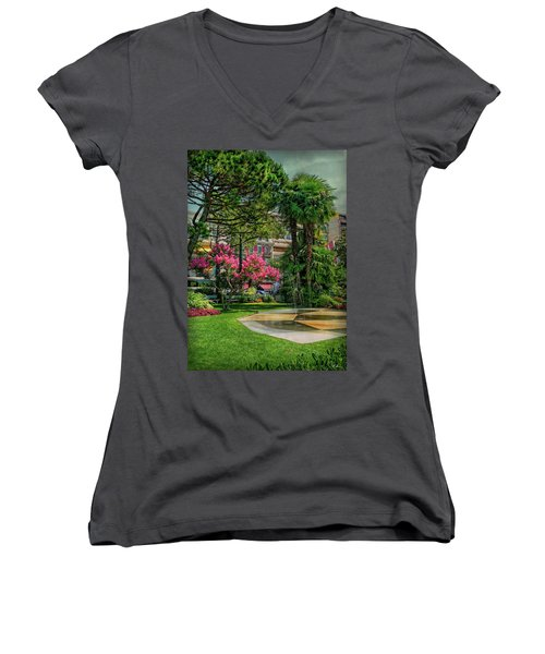Women's V-Neck T-Shirt featuring the photograph The Fancy Swiss South-west by Hanny Heim