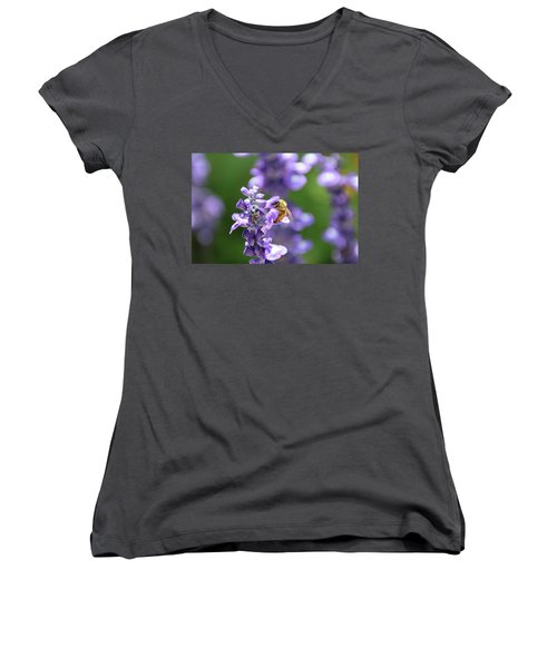 The Fauna And Flora Rendez-vous Women's V-Neck T-Shirt