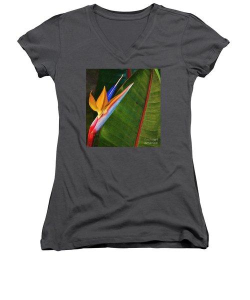Women's V-Neck T-Shirt (Junior Cut) featuring the photograph the flower of God by John Kolenberg