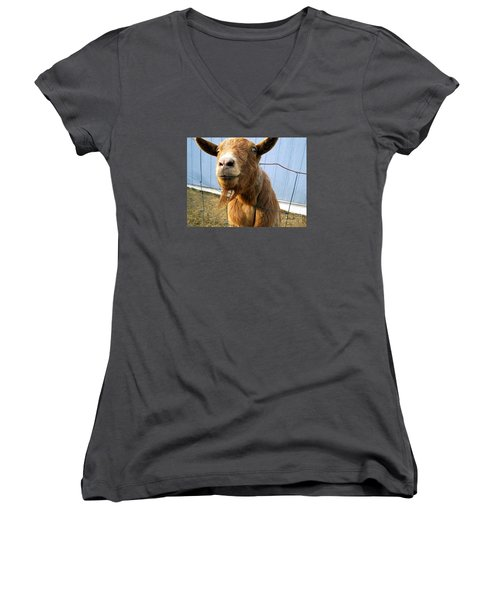 The Friendly Goat  Women's V-Neck T-Shirt