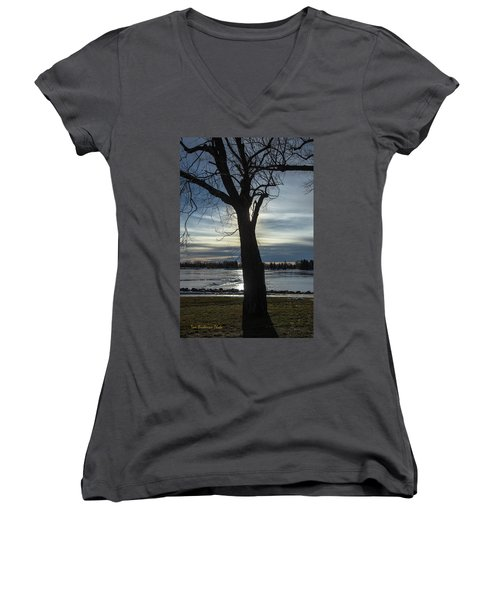 The Frozen Sun Women's V-Neck (Athletic Fit)