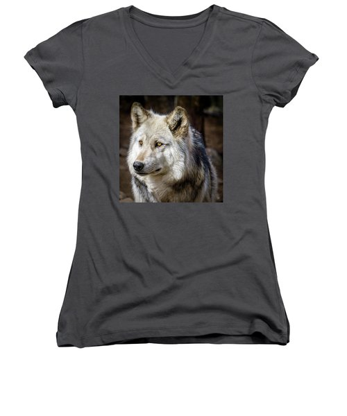 Women's V-Neck T-Shirt (Junior Cut) featuring the photograph The Gray Wolf by Teri Virbickis