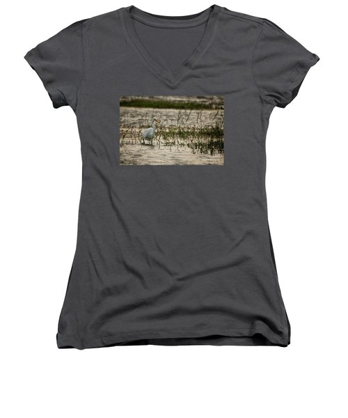The Great Egret  Ardea Alba Syn  Casmerodius Albus  Women's V-Neck (Athletic Fit)