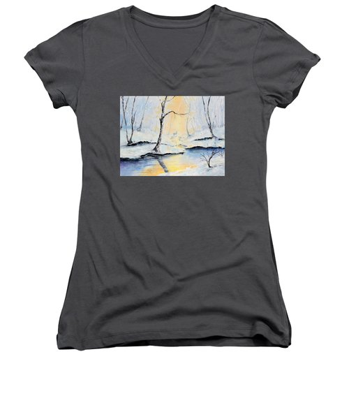 The Guardian Women's V-Neck T-Shirt (Junior Cut) by Meaghan Troup