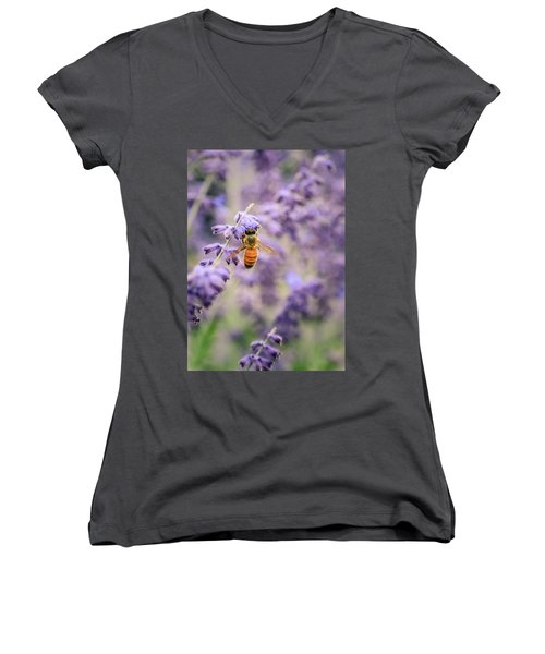 The Honey Bee And The Lavender Women's V-Neck T-Shirt (Junior Cut)