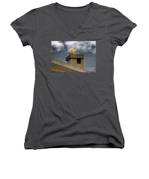The Hunt Goes On Women's V-Neck T-Shirt (Junior Cut) by Al Bourassa