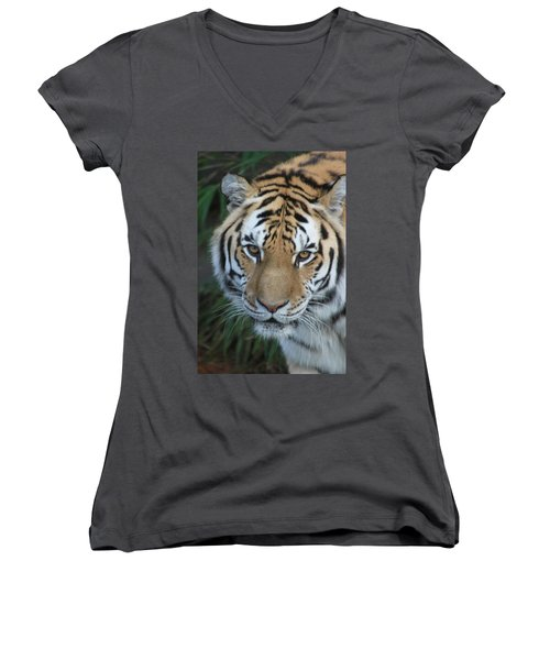 Women's V-Neck T-Shirt (Junior Cut) featuring the photograph The Hunter by Laddie Halupa
