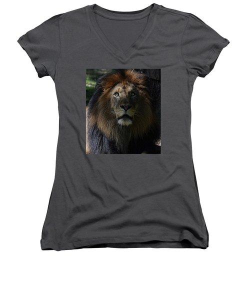 The King In Awe Women's V-Neck T-Shirt (Junior Cut) by Ronda Ryan