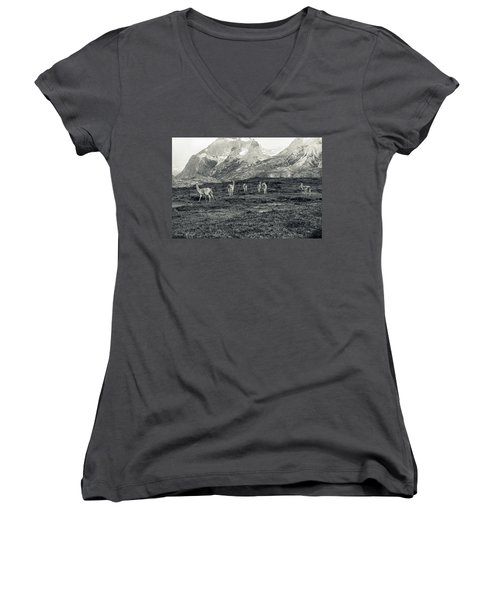 Women's V-Neck T-Shirt (Junior Cut) featuring the photograph The Lamas by Andrew Matwijec