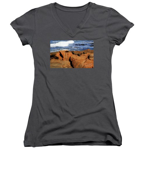 The Lazy Lounging Seals Women's V-Neck (Athletic Fit)