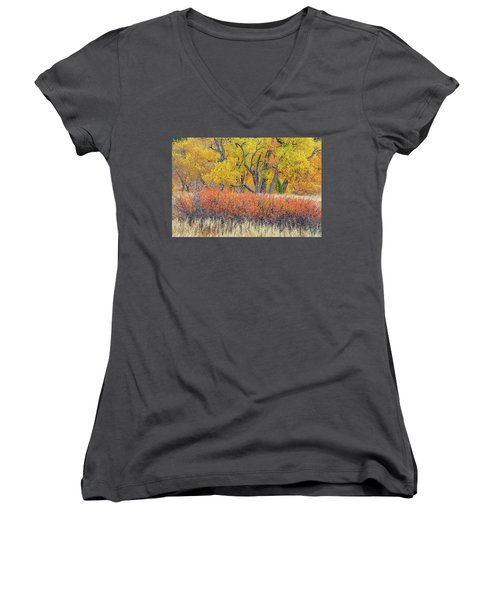 The Leaves That Will Become The Essential Component Of Soil Called Humus  Women's V-Neck T-Shirt