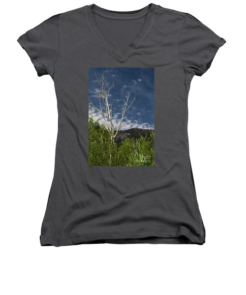 The Lonely Aspen  Women's V-Neck (Athletic Fit)