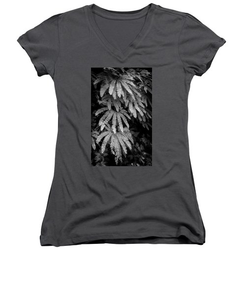 The Maiden's Hair Women's V-Neck