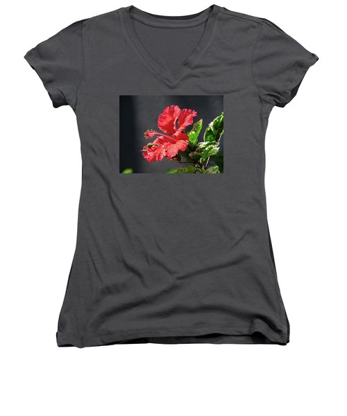 The Mallow Hibiscus Women's V-Neck