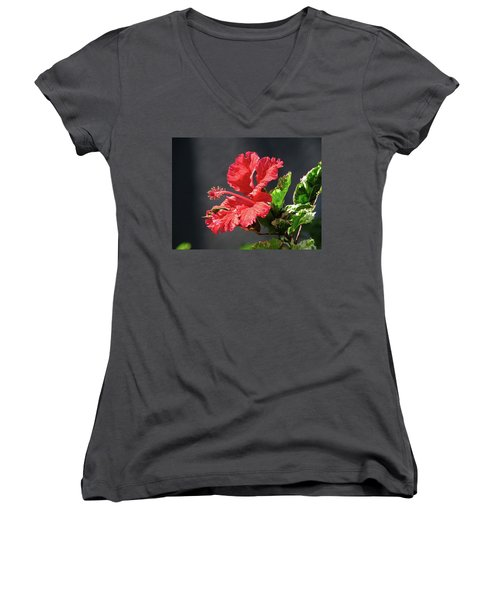 The Mallow Hibiscus Women's V-Neck (Athletic Fit)