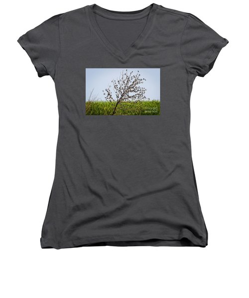 Women's V-Neck T-Shirt featuring the photograph The More The Merrier- Tree Swallows  by Ricky L Jones