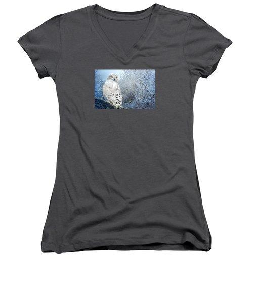 The Mystical Snowy Owl Women's V-Neck T-Shirt (Junior Cut) by Brian Tarr