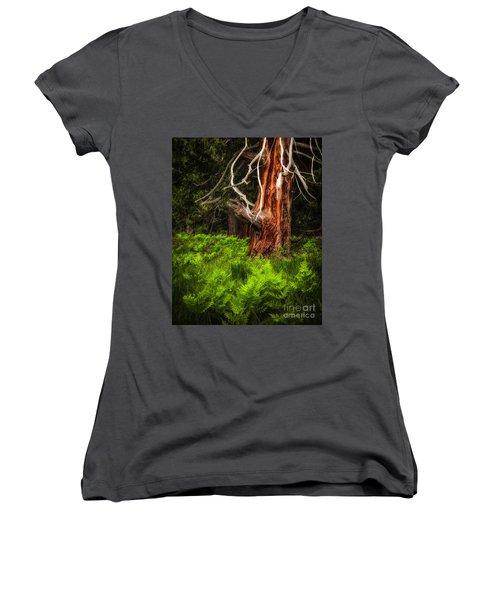 The Old Tree Women's V-Neck