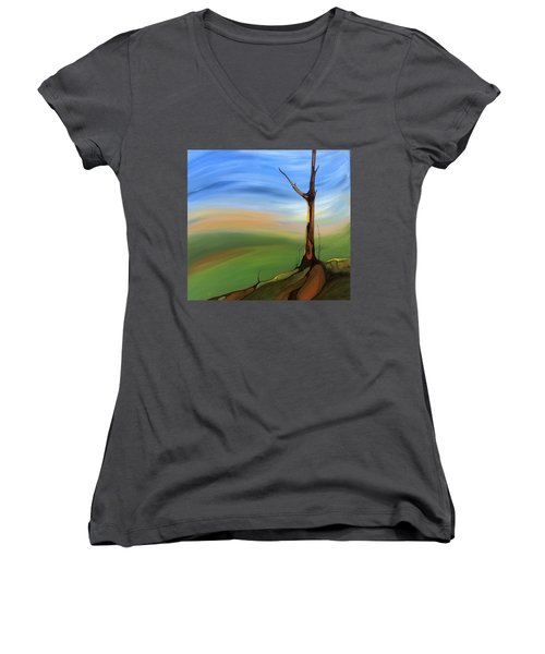 The Painted Sky Women's V-Neck T-Shirt (Junior Cut)