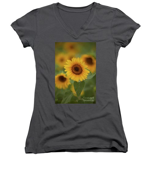 The Patch Of Sunflowers Women's V-Neck