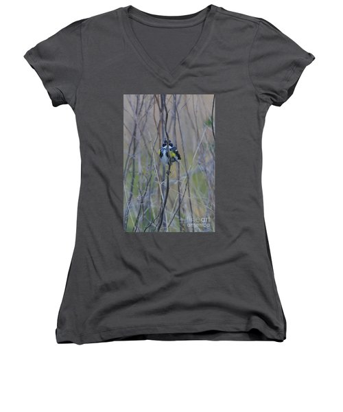 The Perfect Hiding Spot Women's V-Neck (Athletic Fit)