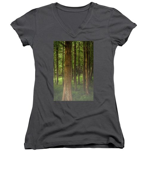 The Pines Women's V-Neck (Athletic Fit)