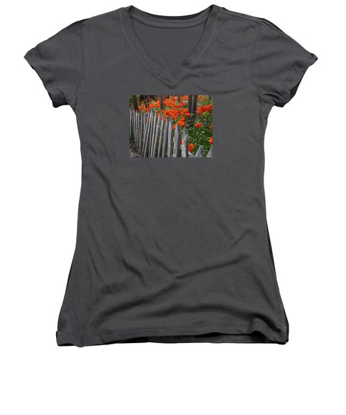 The Poppy Fence Women's V-Neck T-Shirt