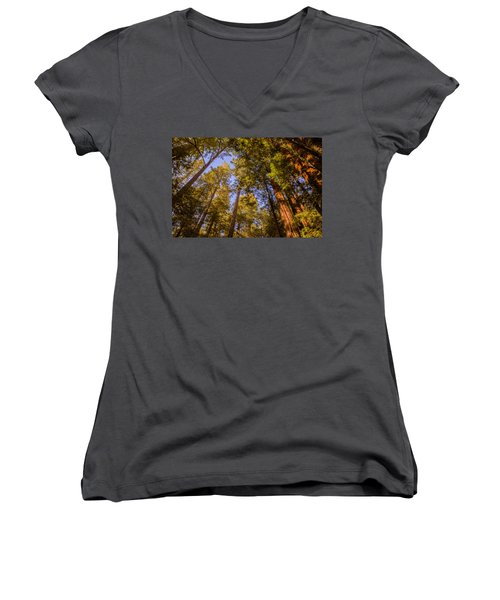 The Portola Redwood Forest Women's V-Neck