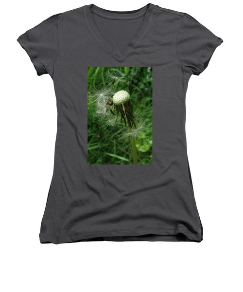 The Promise Of Renewal 1 Women's V-Neck T-Shirt (Junior Cut) by I'ina Van Lawick