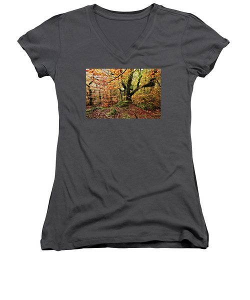 Women's V-Neck T-Shirt (Junior Cut) featuring the photograph The Protector by Jorge Maia