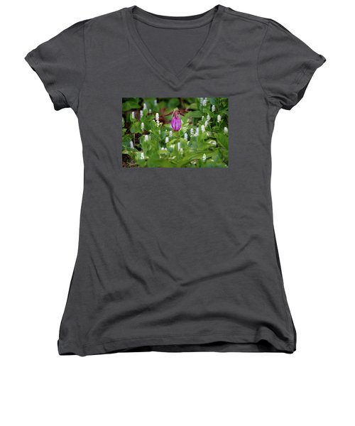 The Queen And Her Minions Women's V-Neck (Athletic Fit)