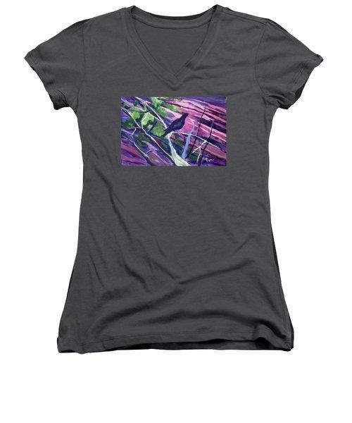 The Raven Women's V-Neck T-Shirt