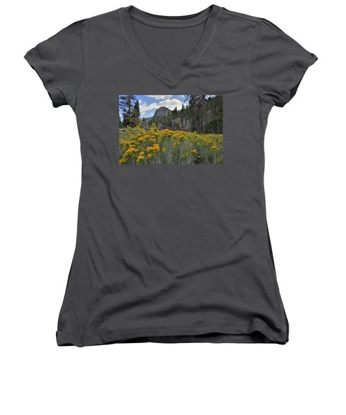 The Road To Mt. Charleston Natural Area Women's V-Neck