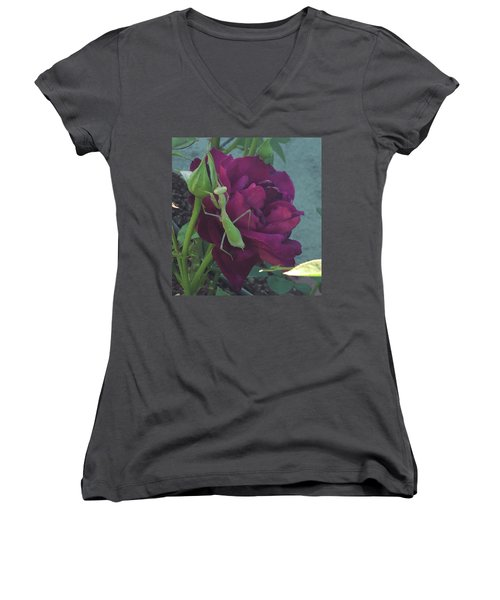 The Rose And Mantis Women's V-Neck T-Shirt