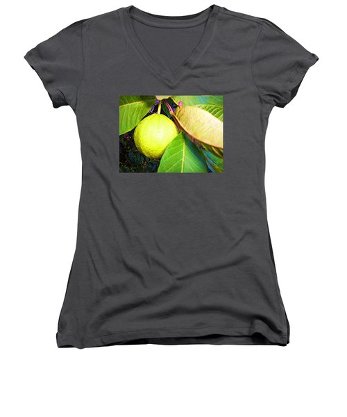 The Rose Apple Women's V-Neck T-Shirt