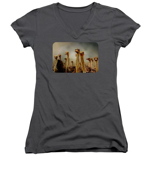 The Savannah Gang Women's V-Neck T-Shirt (Junior Cut)