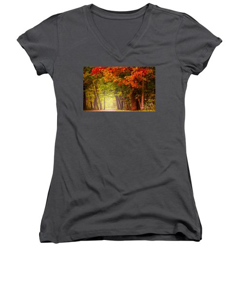The Secret Place Women's V-Neck T-Shirt (Junior Cut) by Rima Biswas