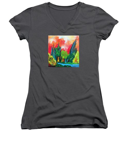 The Secret Stream Women's V-Neck T-Shirt (Junior Cut) by Elizabeth Fontaine-Barr