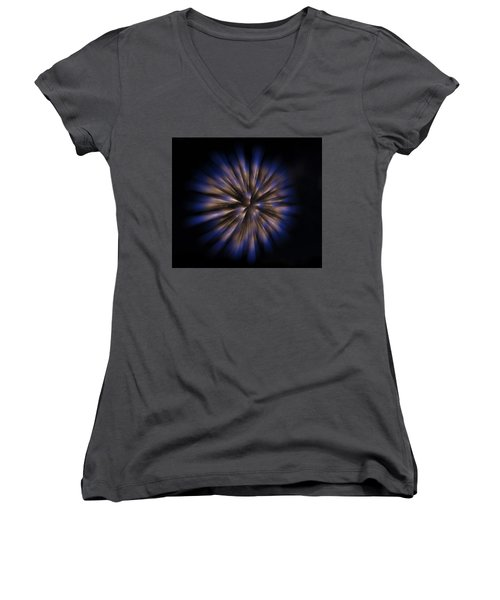 The Seed Of A New Idea Women's V-Neck
