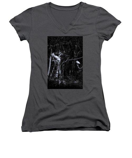 The Sleeping Quaters Women's V-Neck T-Shirt