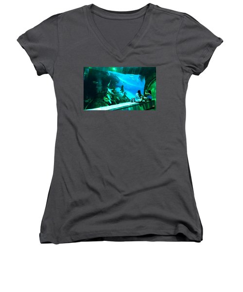 The View Down Under Women's V-Neck T-Shirt