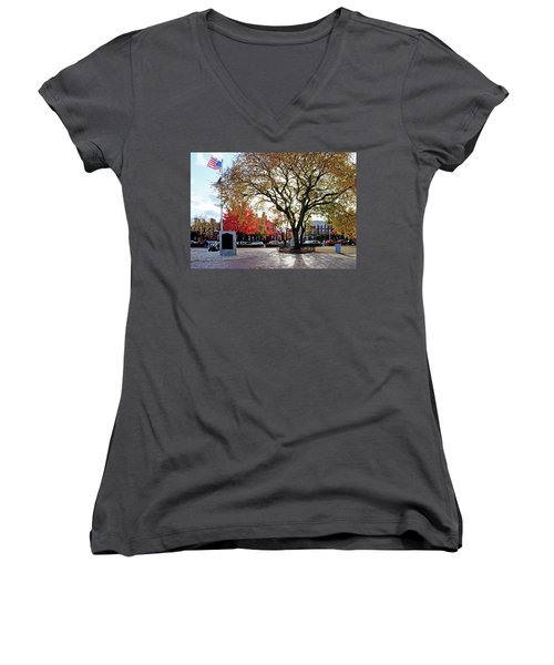 The Washington Elm Women's V-Neck