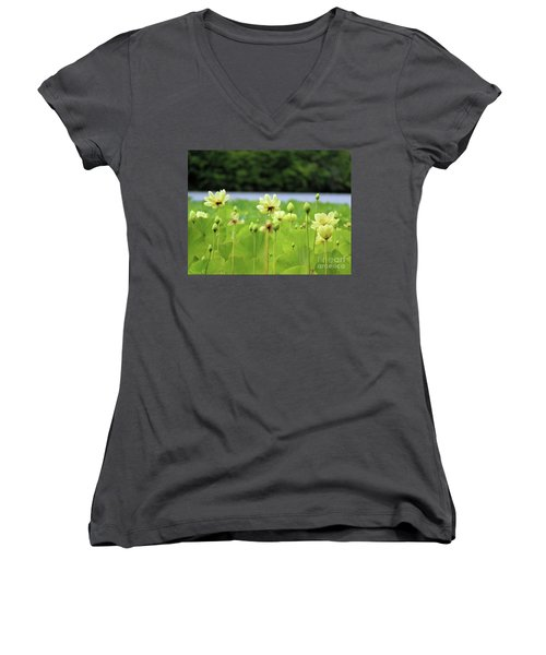 The Water Fields  Women's V-Neck (Athletic Fit)