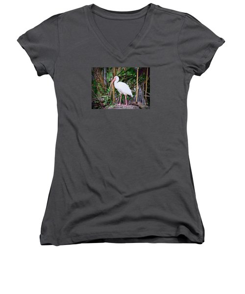 Women's V-Neck T-Shirt (Junior Cut) featuring the painting The White Ibis by Judy Kay