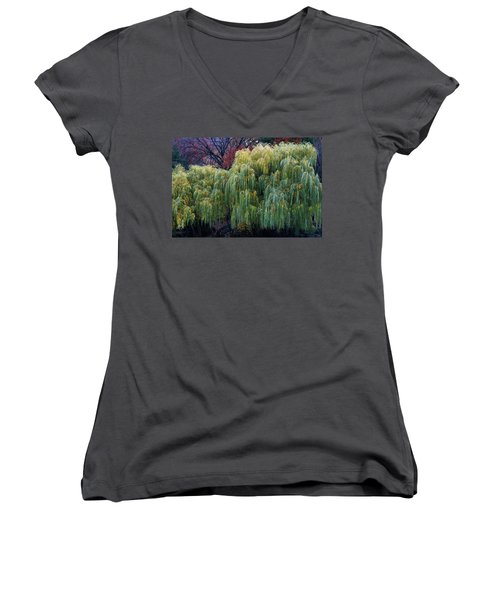 The Willows Of Central Park Women's V-Neck (Athletic Fit)