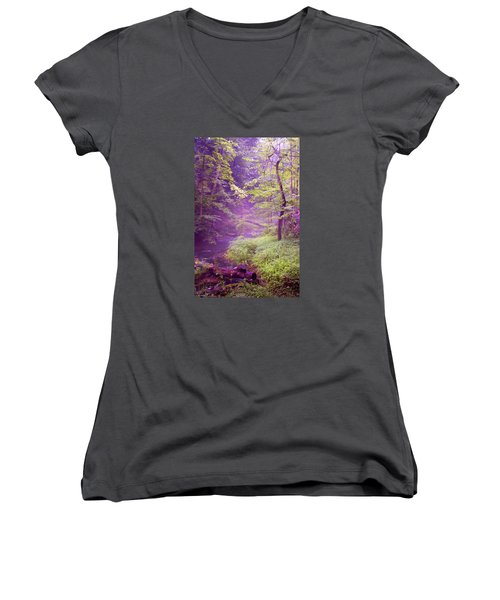 The Wonder Of Nature  Two Women's V-Neck T-Shirt (Junior Cut) by John Stuart Webbstock